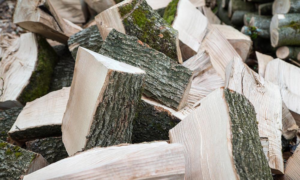 timber6